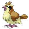 pidgey Logo Icon PNG