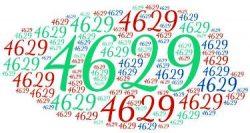 bahasa inggris 4629