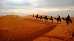 desierto-desert-gurun