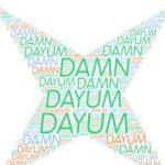 Dayum Logo Icon PNG